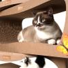 Лежанка-когтеточка Cat Home Strender XXL